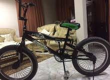 دراجة bmx  السعر قابل للتفاوض
