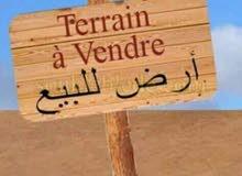 للبيع قطعة أرض صالحة للبناء منزل إسماعيل بني نافع بنزرت الجنوبية