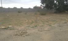قطعه ارض لبيع مساحته 500 م في منطقه توغار بي قرب من مطار طرابلس 0918501619