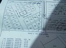 ارض سكنية بمساحة 594 متر في ولاية شناص
