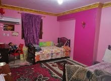 special apartment in Qalubia for sale