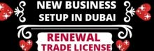 New Business Setup and Family 2 Year Visa Services in U.A.E