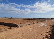 ارض للبيع الموقع كروم الخيل المساحة55×85