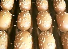 معمل كعك آلي في الأردن للبيع