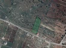 أرض للبيع بمساحة 4 دونمات و 347 متر مربع