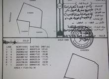 ارض زراعية-سكنية-تجارية للبيع