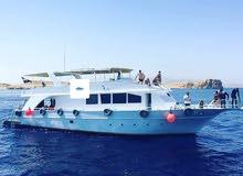 مركب سياحى بشرم الشيخ (البحر الاحمر)