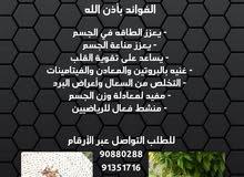 مكسرات مطحونة مع عسل النحل والسمن الأصلي