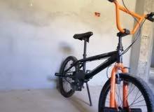 دراجة ايطاليا