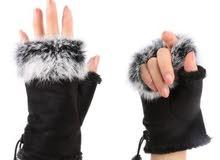 cloves for winter