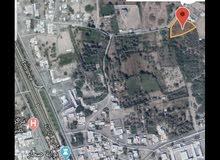 للبيع مزرعه صحار مجز الكبرى 4453 متر بها بئر بسعر مغري شرق الشارع العام