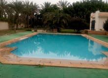 حمامات سباحه Dar construction group