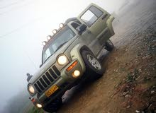 Gasoline Fuel/Power   Jeep Liberty 2004
