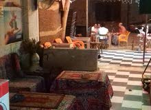 (كافي شوب كافيه قهوه كافتريا ) بسعر خيالي (للإيجار) الهرم الجيزة مصر