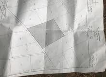 اراضي للبيع او للاستثمار او للضمان من المالك مباشرة باسعار مغرية جنوب عمان