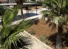 مركز للرعاية مسمين للزهراء نستقبل مسمين ترحب بكم الزهراء للمسنين 0796397704