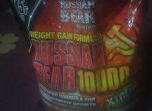 بروتين ضخامه عضليه وزياده وزن راشن بير الدب الروسى للبيع