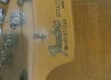 Electric Guitar Fender stratocaster +amplifier