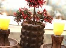 انتيكات نحاسية وخشبية من خشب الورد والجوز