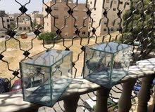 حوض زجاجي شفاف حجم صغير قياس 33 سم و قياس 27 سم للاستخدام المكتبي او التفريغ