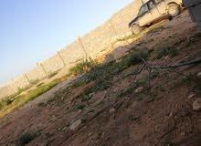 أرض للبيع المساحة 1800 في بر منطقة الجمعة قبل وادي حلوفه