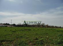 ارض للبيع في المشتى بمساحة 10 دونم