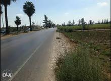 أرض مشاريع إستثمارية للبيع في طريق طنطا إسكندرية