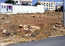 قطعة ارض مميزة في عيون الذيب -شفا بدران / عمان.