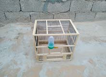 قفص طيور صناعة يديوية للبيع