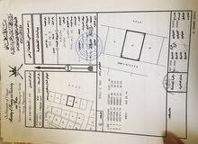 للبيع ارض شبك في ولاية المصنعة منطقة أبو عبالي