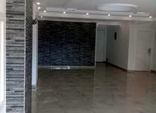 apartment area 230 sqm for sale
