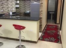 شقة مفروشة لقطة فى شارع عمارات البترول بمنطقة احمد عرابي