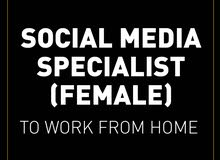 SOCIAL MEDIA SPECIALIST TO WORK FROM HOME (FEMALE)