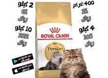 رويال كانين طعام جاف للقطط الفارسية البالغة