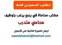 مطلوب محامي متدرب في ينبع