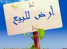 أرض للبيع في زناتة زوز وجهات قرب قناة النباء