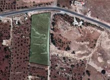ارض زراعية سكنية