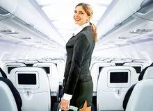 هل ترغب بالعمل بشركات السياحه والطيران ؟؟