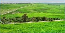 ارض فلاحية مساحتها 544 هكتار و 80 آر