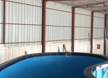 احواض سباحة فايبر جلاس جاهزة مع التركيب والكسسوارات