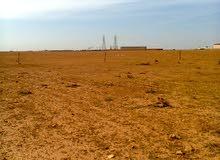 ارض للبيع في النواقية خلف محطة الكهرباء طريق النواقية المقزحة