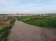 قطعة أرض دونمين-هام مقابل إسكان مهندسين ناطفة، 300 متر عن الحزام الدائري
