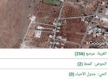 بالقرب من عمان مزرعه مميزه فقط ب 65 الف.