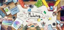 خبيرة إدارة العلامات التجارية والتسويق
