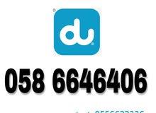 058 6646406. for sale  Du prepaid number (3dgt )