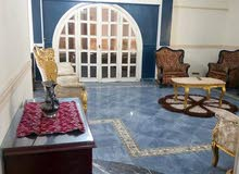 شقه مفروشه للايجار مدد او اام 3 غرف بمدينة نصر