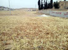 أرض سكني للبيع سحاب شرق مستشفى التوتنجي 500متر مفروزة من المالك