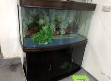 حوض سمك للبيع بكامل مرفقاته