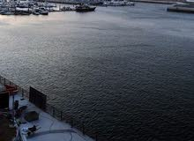 اطلالة ع المارينا غرفتين 2BHK Marina view