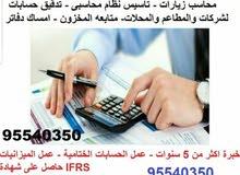 تدقيق حسابات لشركات والمحلات وتاسيس نظام محاسبى لمطاعم ومحلات
